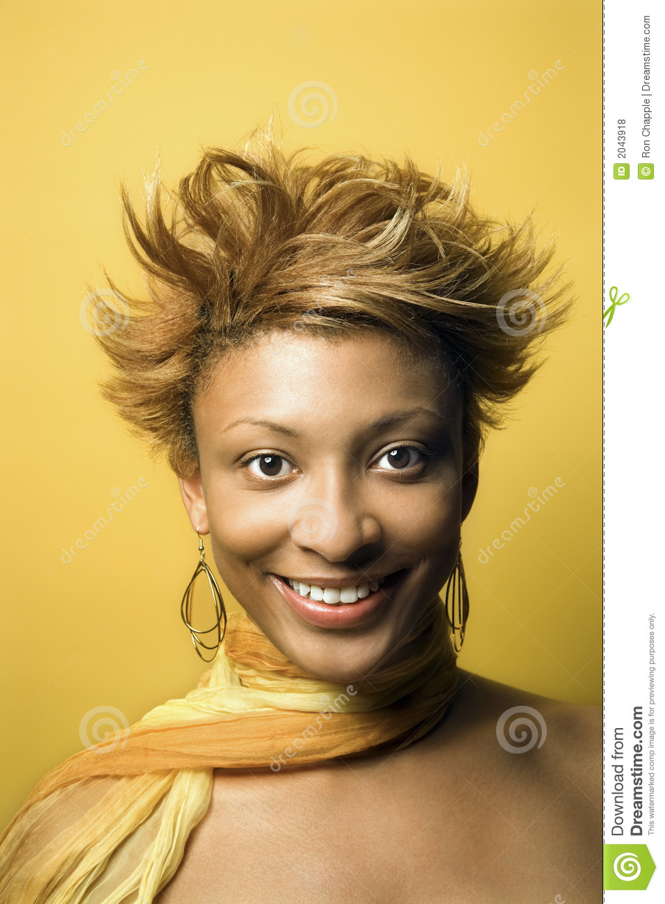 Young African American Woman Portrait Stock Photo Image