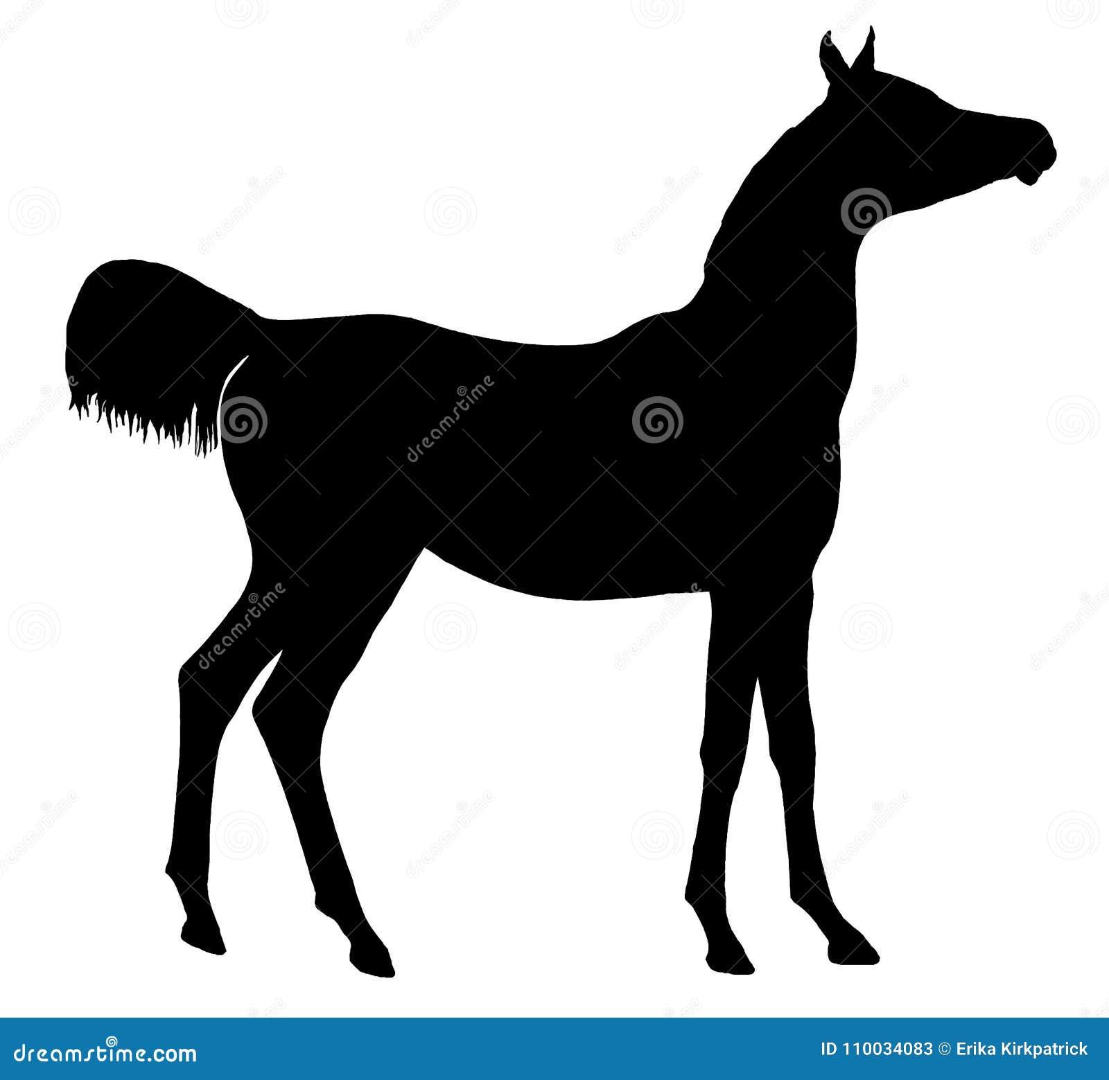 Horse Silhouette Isolated Stock Illustration Illustration Of Arabian 110034083