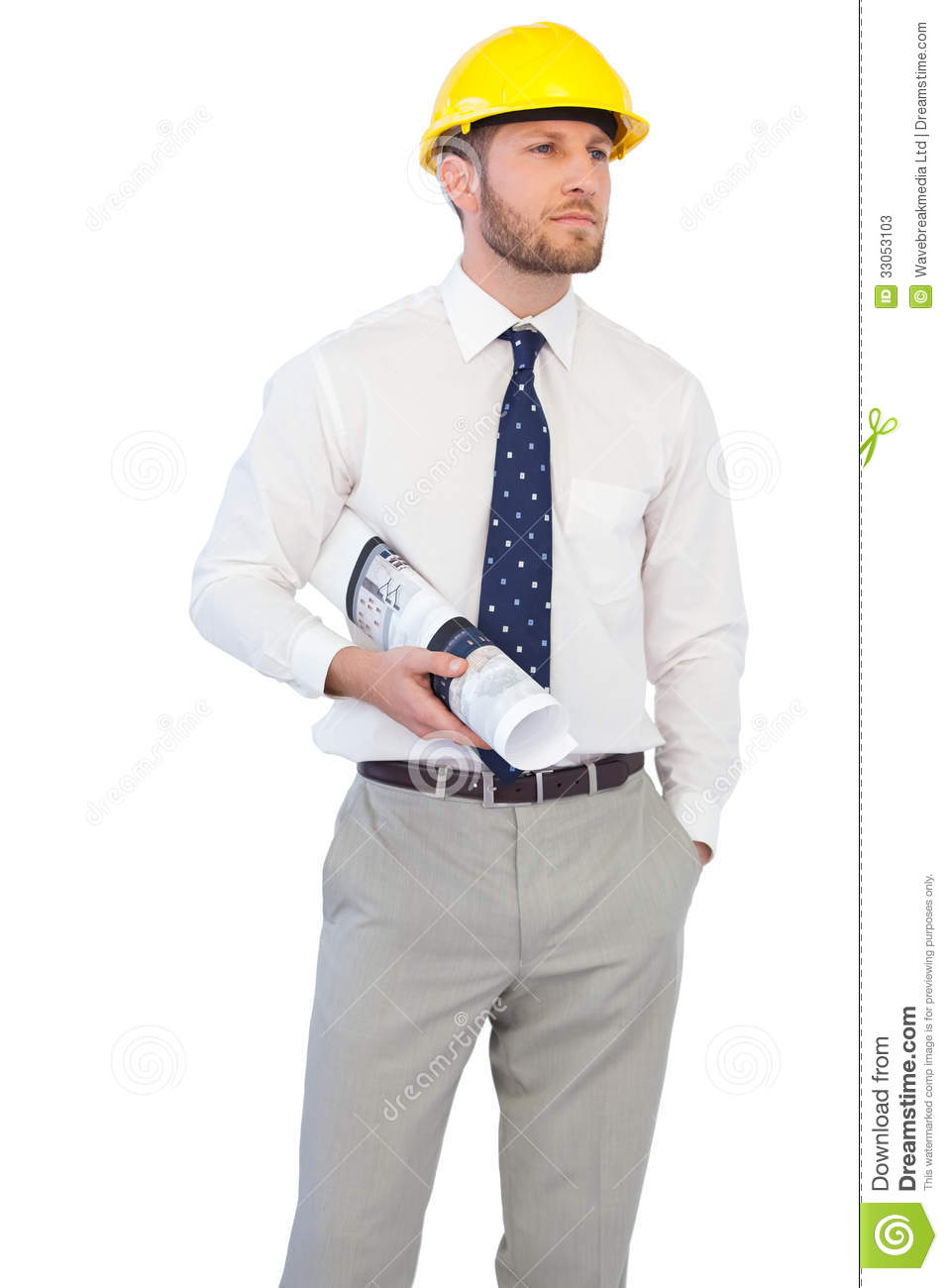 Young Architect Posing With Hard Hat And Plan Stock Image