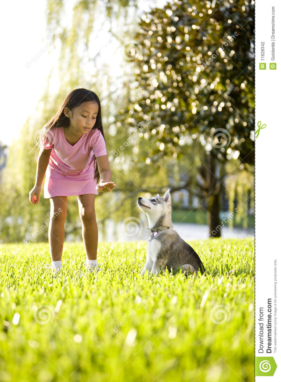 Young Asian girl training puppy to sit