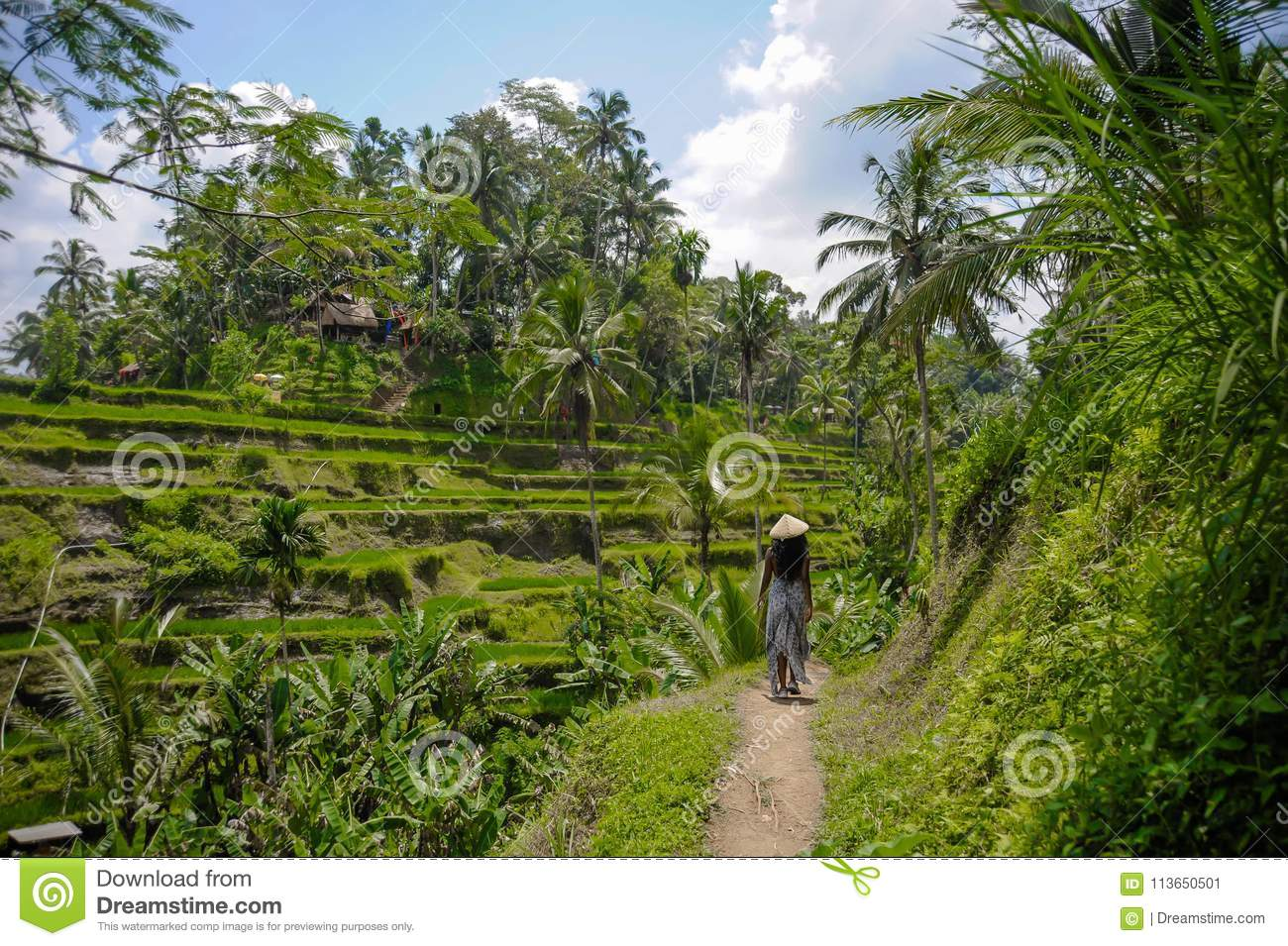 young attractive happy afro american black woman 30s exploring rice fields forest and jungle in Bali wearing asian hat