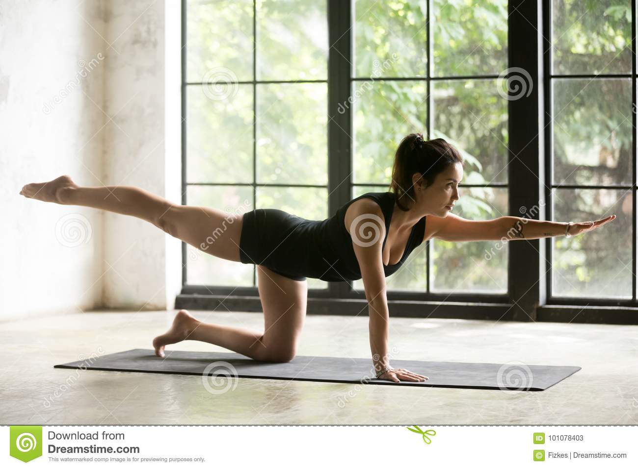Young Attractive Woman In Bird Dog Pose Home Background Stock Image