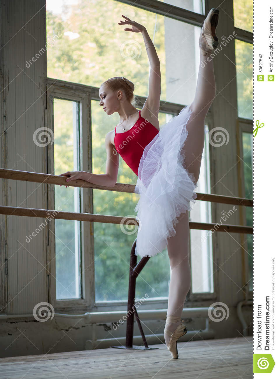 Young Ballerina Standing On One Leg On Your Toes In Pointe