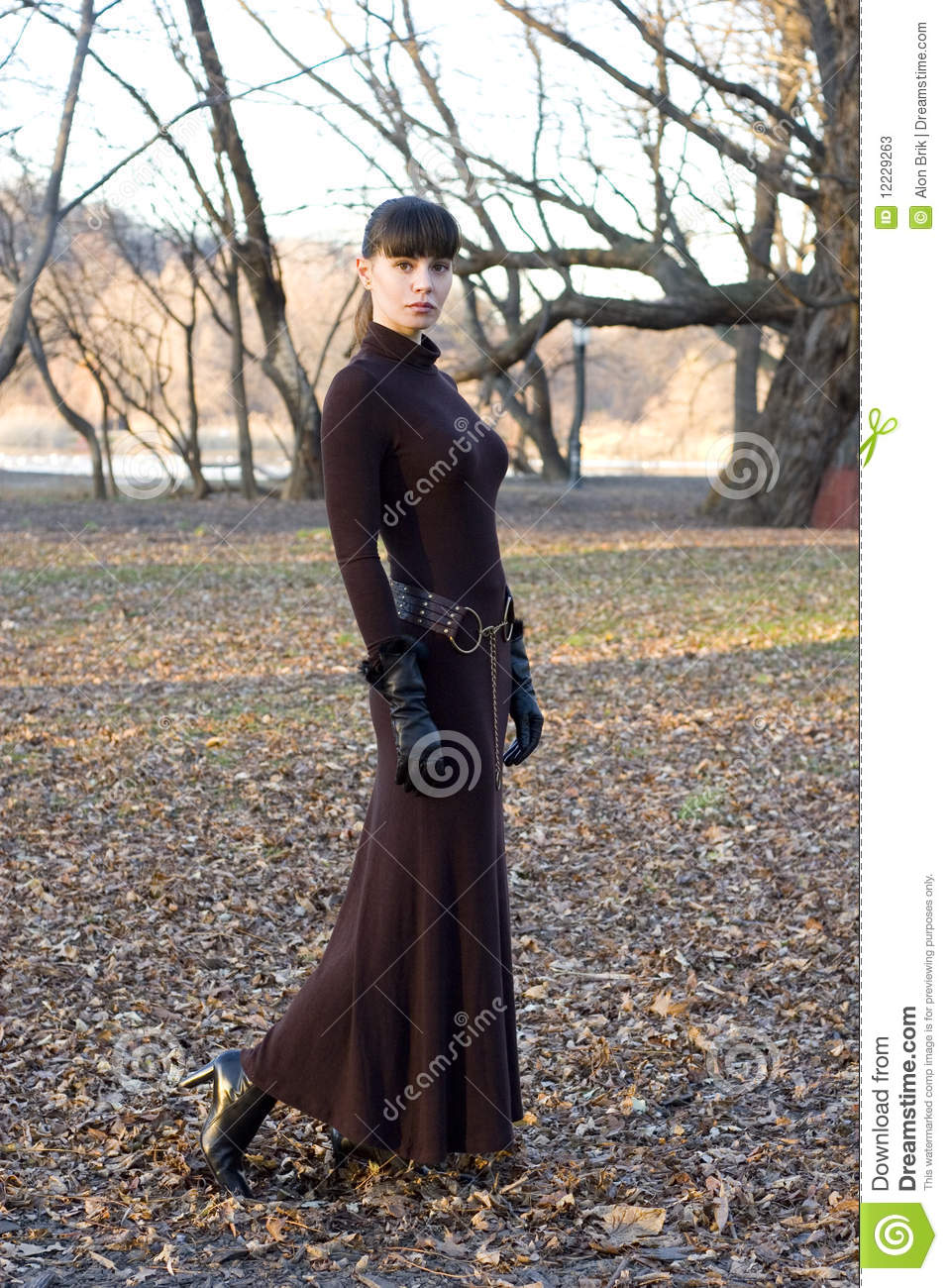 Young Beautiful Attractive Woman In Long Dress Stock Image Image
