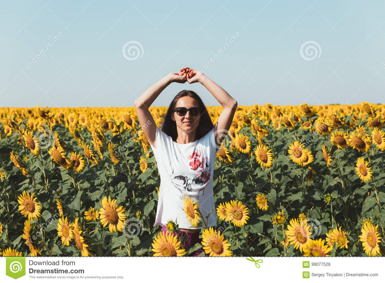 Young Beautiful Girl Standing In Sunflowers And Raising Hands Up. Freedom Lifestyle Journey Concept