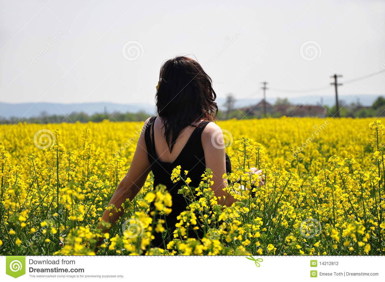 Young Beautiful Girl On Yellow Flower Field Stock