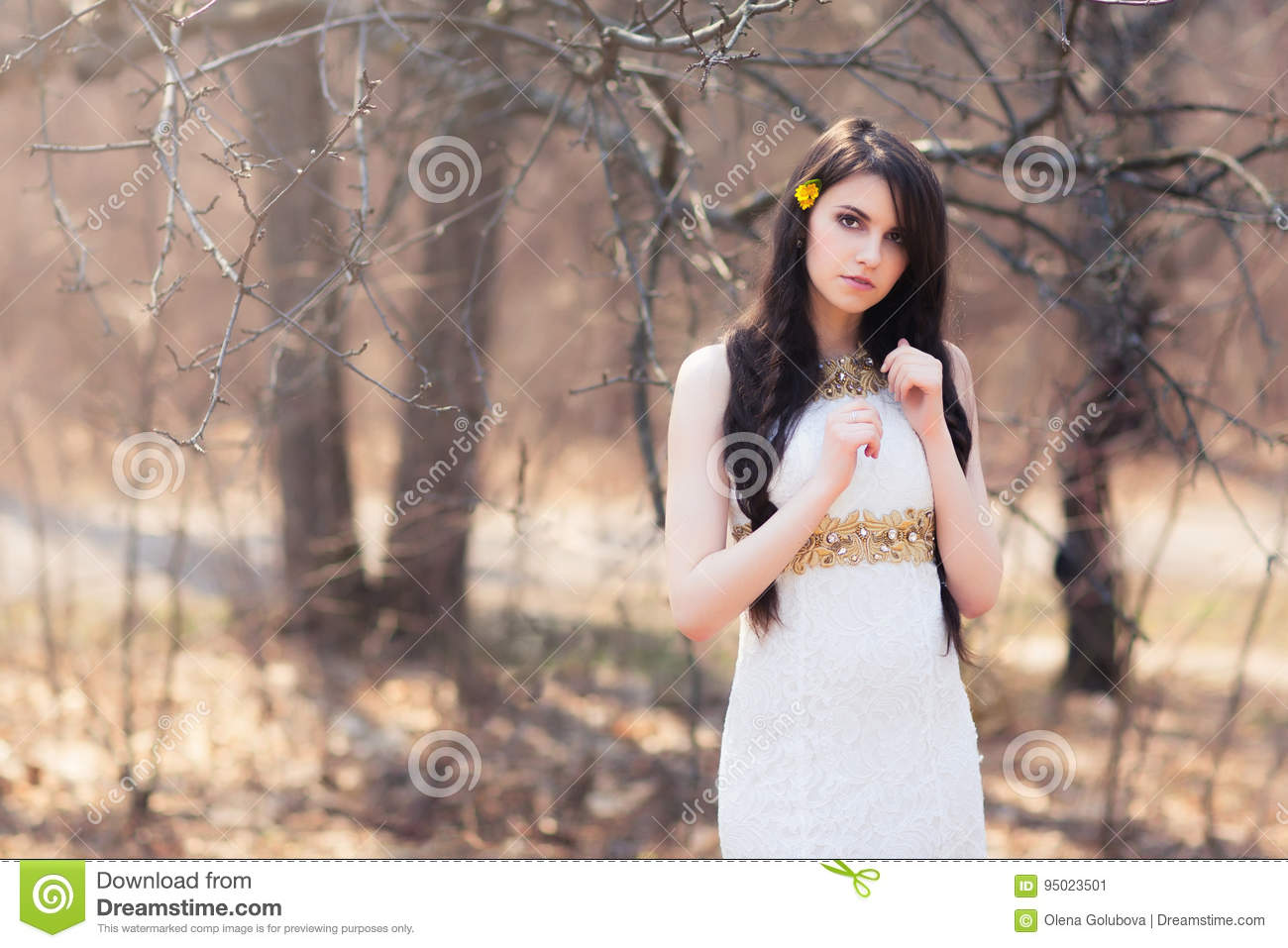 Young Beautiful Woman With Flowers In Hair Stock Image Image Of