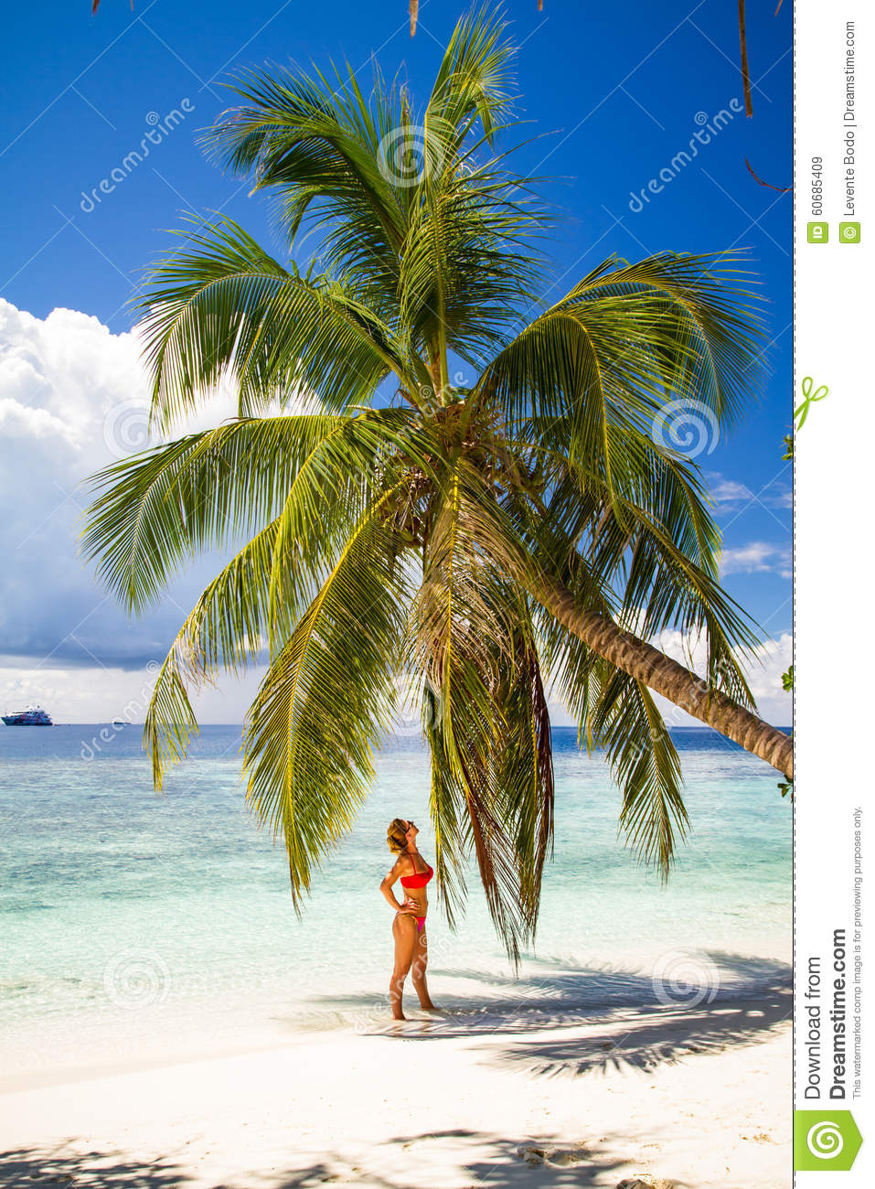 Woman Relaxing Under Palm Tree In Tropical Island Stock
