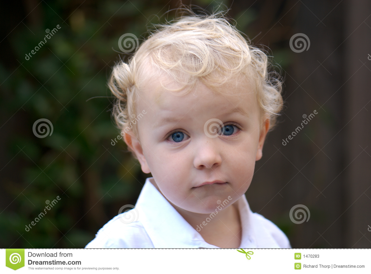 Young Boy With Blonde Hair Stock Image Image Of Happy 1470283