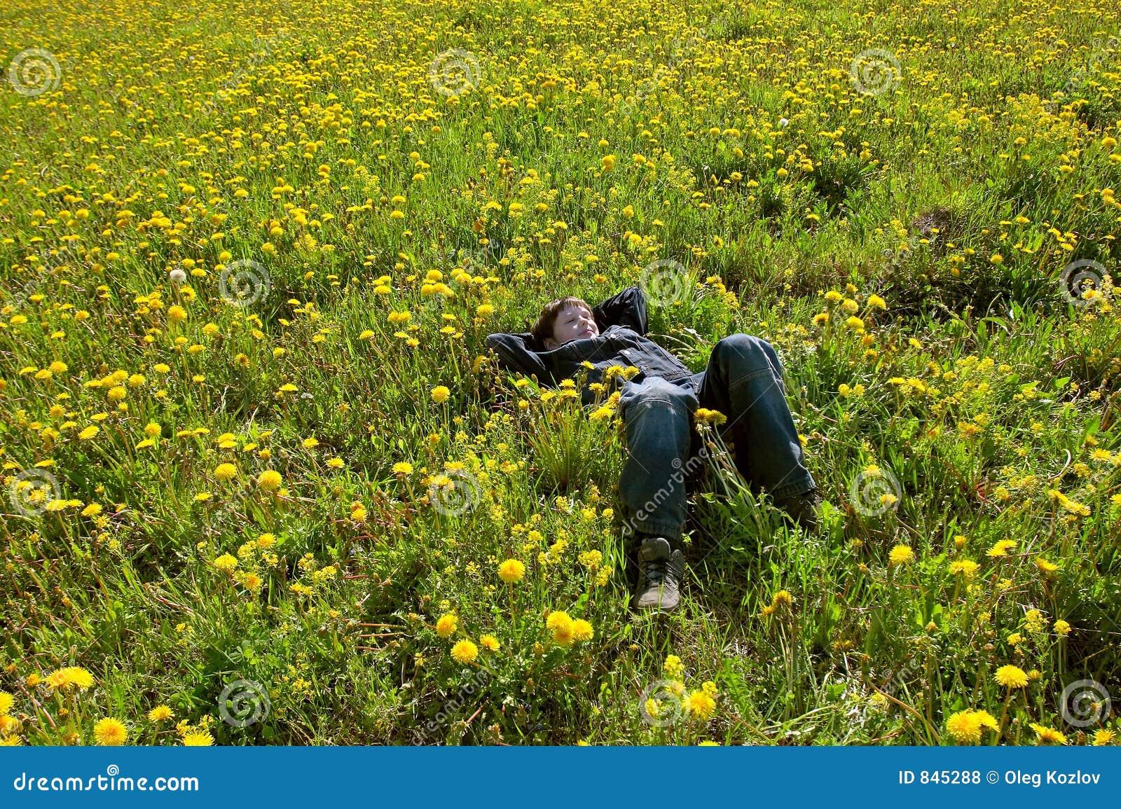 Young boy in flwer field