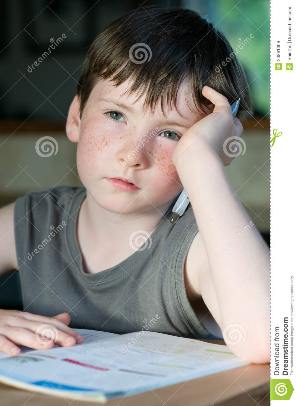Young Boy With Freckle Royalty Free Stock Images - Image ...