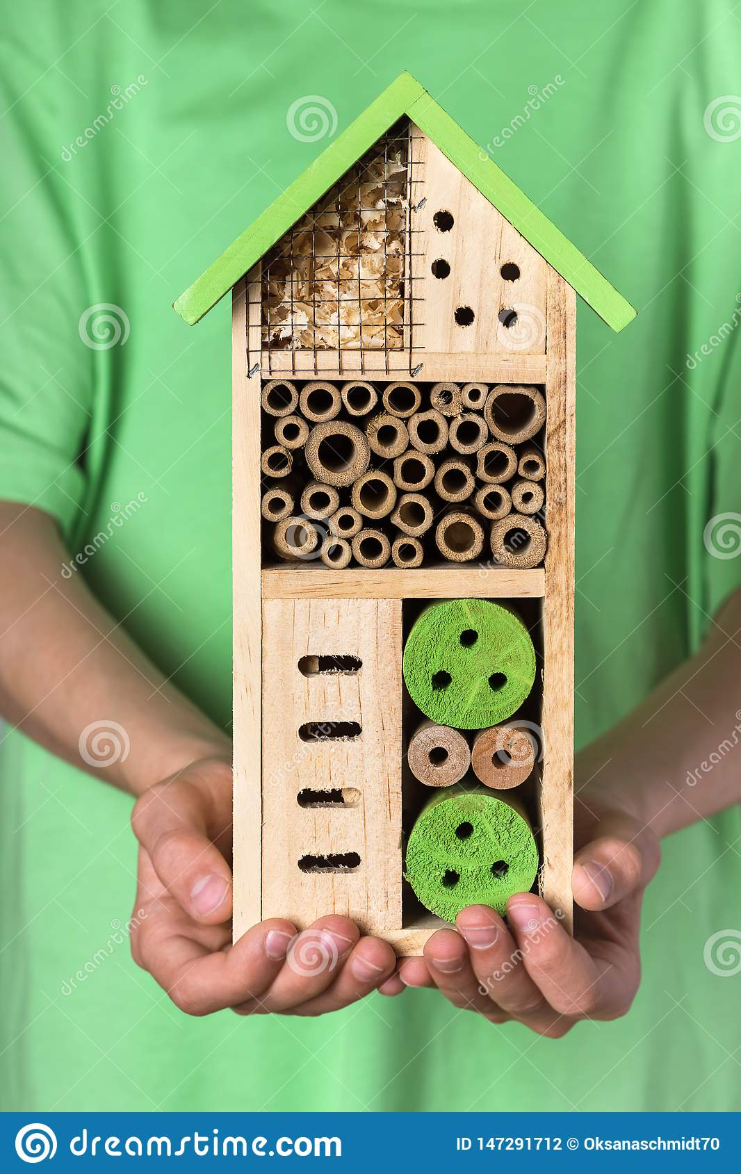 Young boy holding decorative wooden bee for different child of insects.