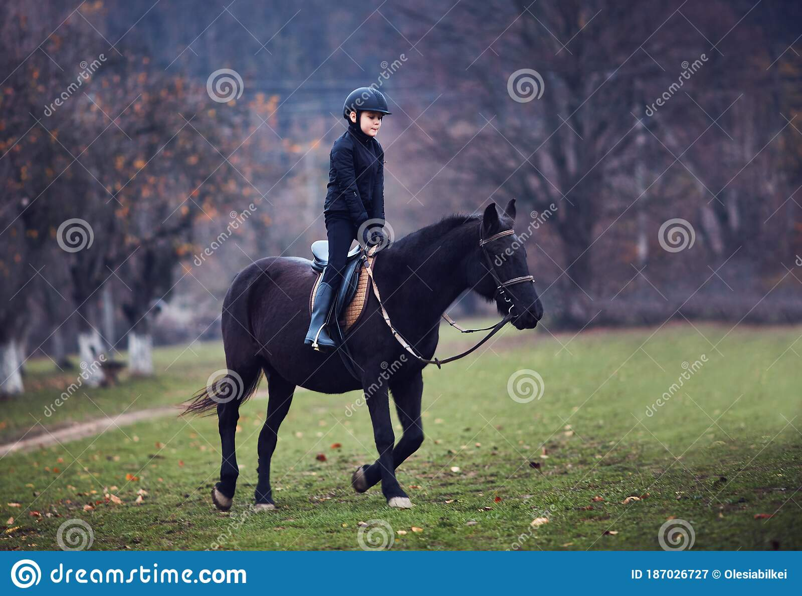 Young Boy Kid Is Taking A Horse Riding Lesson Equestrian Sport Horseback Rider Outfit Stock Image Image Of Equestrian Hobby 187026727