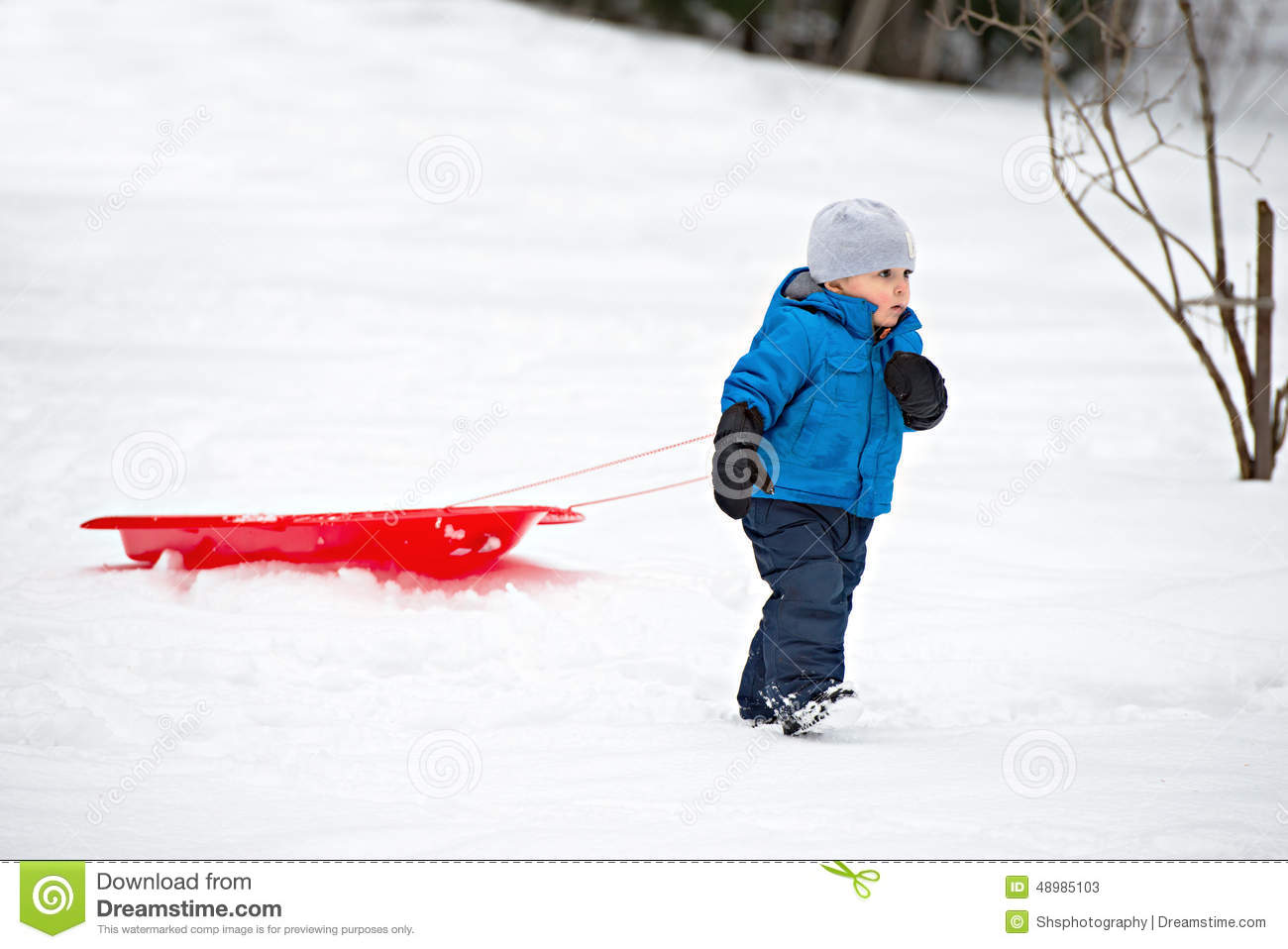 young boy pulling a sled in the snow stock image image of active