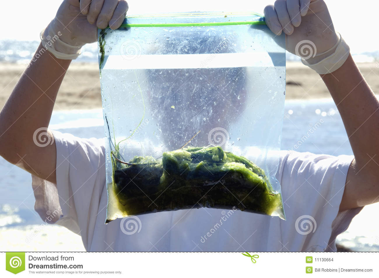 Young boys ocean science project stock photo image 11130664 young boy s ocean science project sciox Image collections