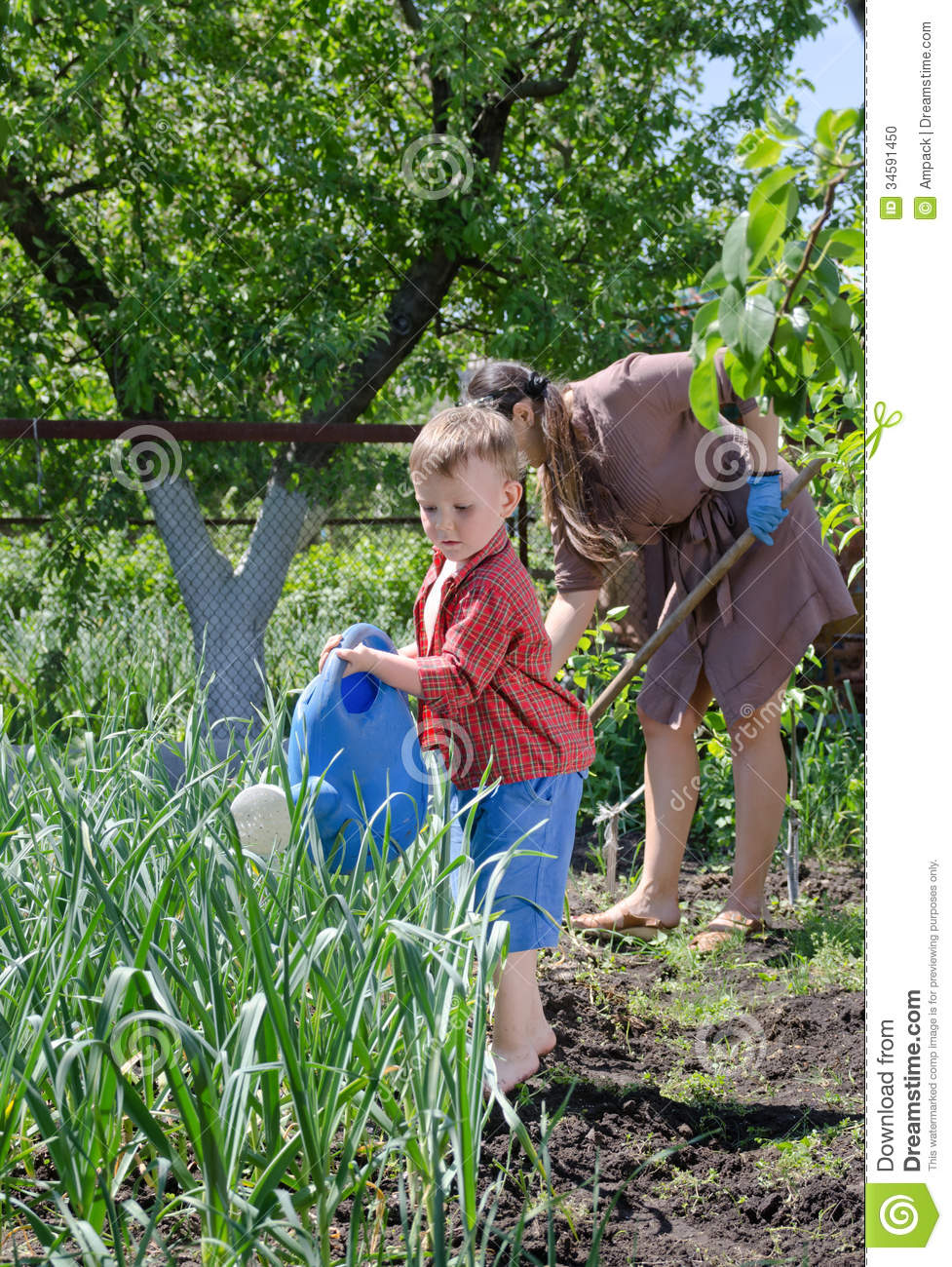 Young boy watering the vegetable garden stock photo for Watering vegetable garden