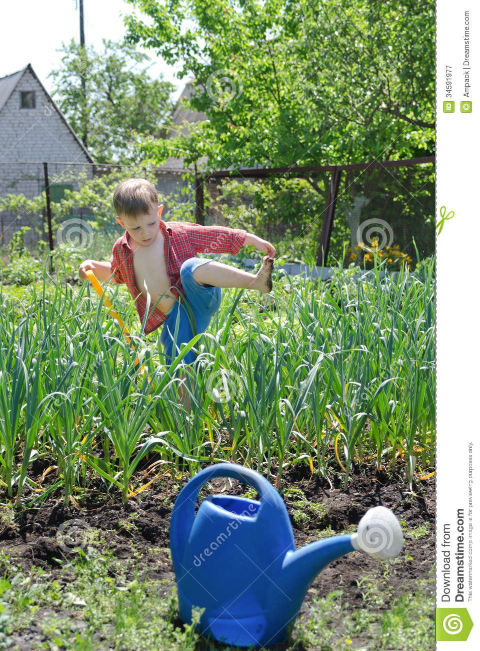 Young Boy Working In The Veggie Garden Royalty Free Stock