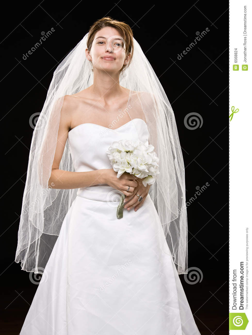 Pictures Of Wedding Dresses With Veil