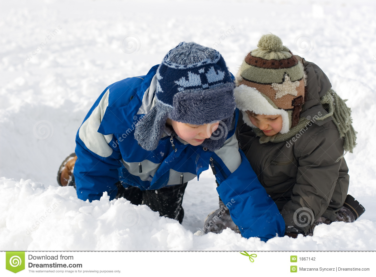 Young Brothers In Snow
