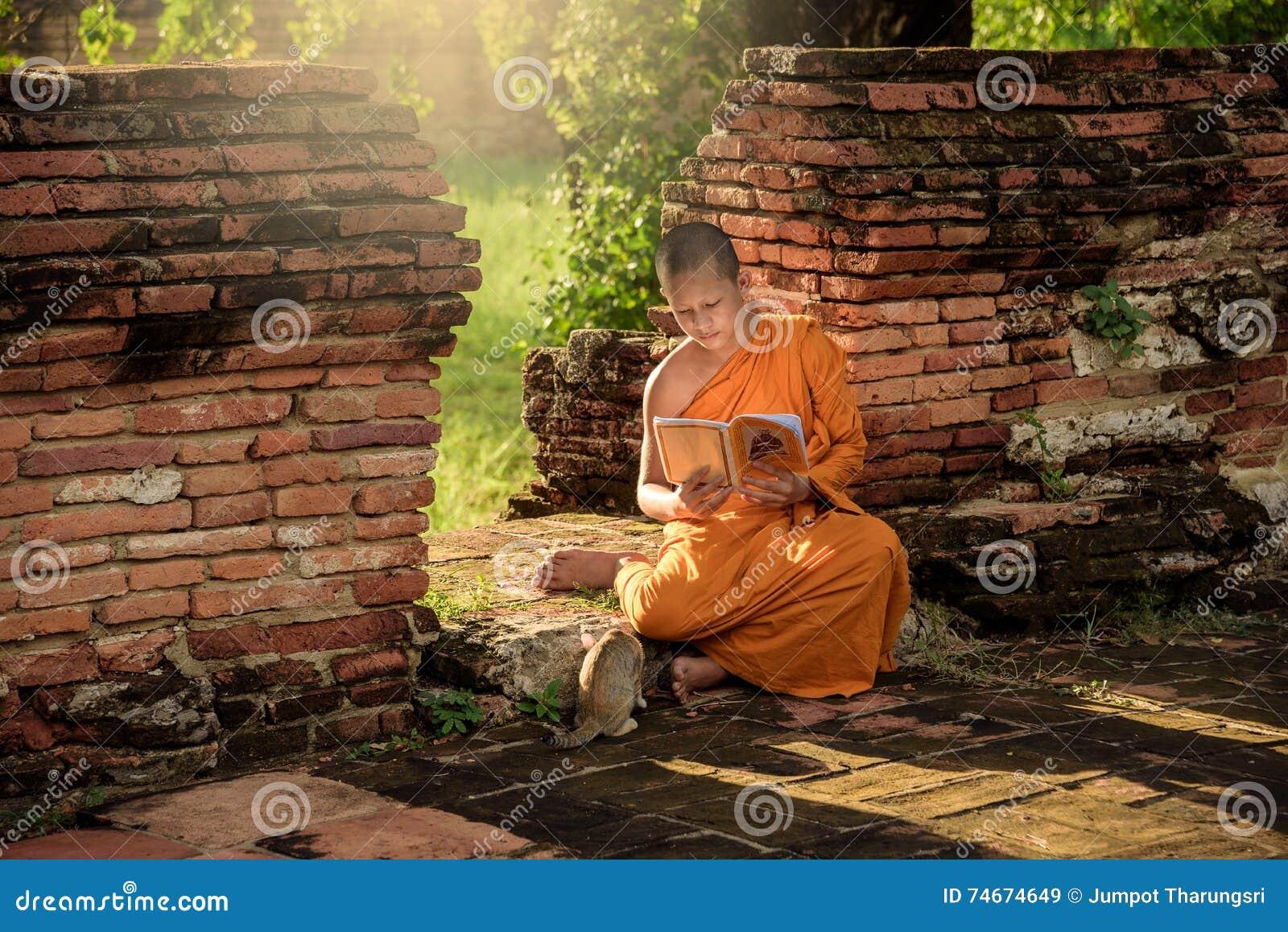 Young Buddhist novice monk