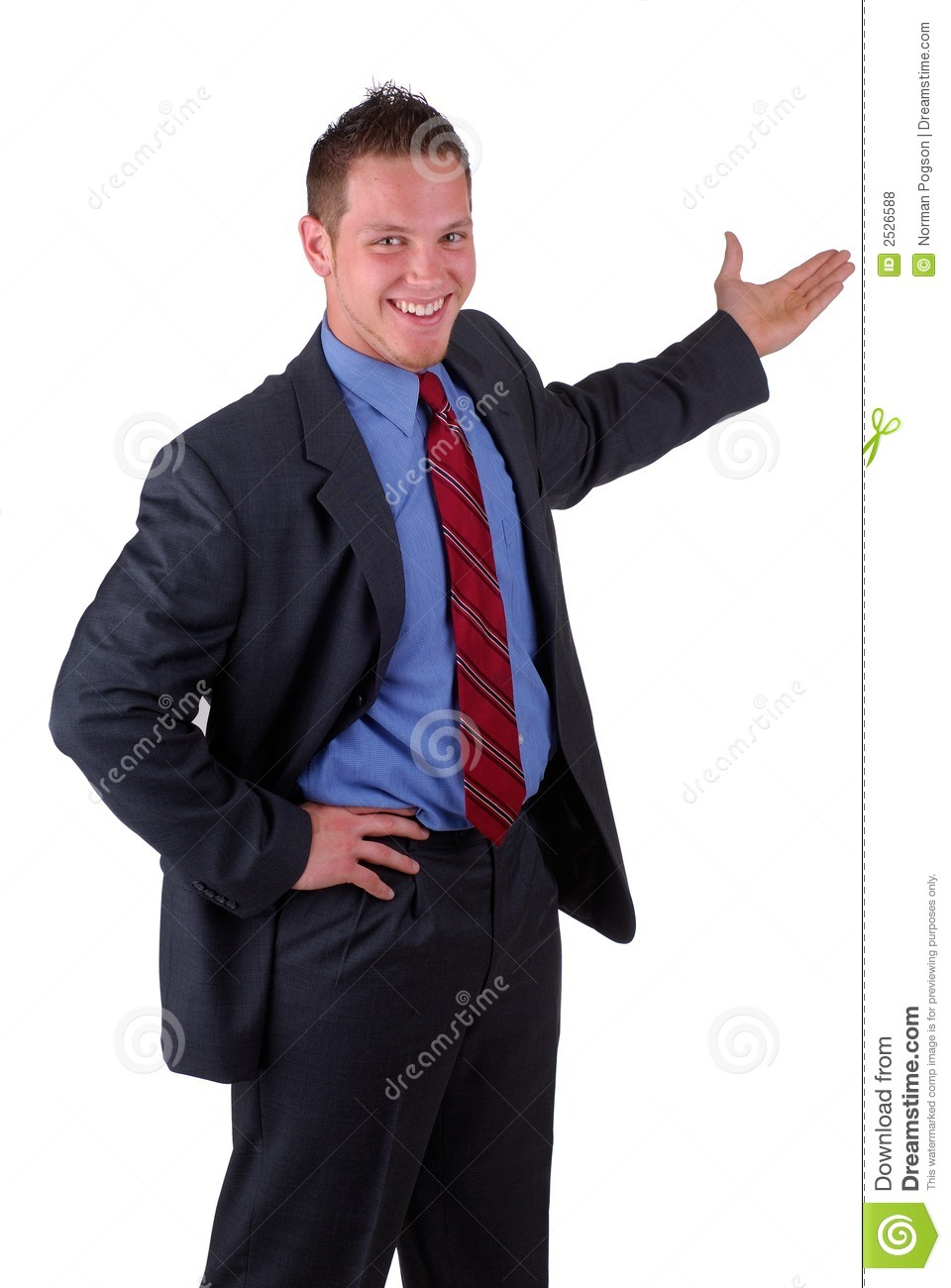 Young Businessman Presenting