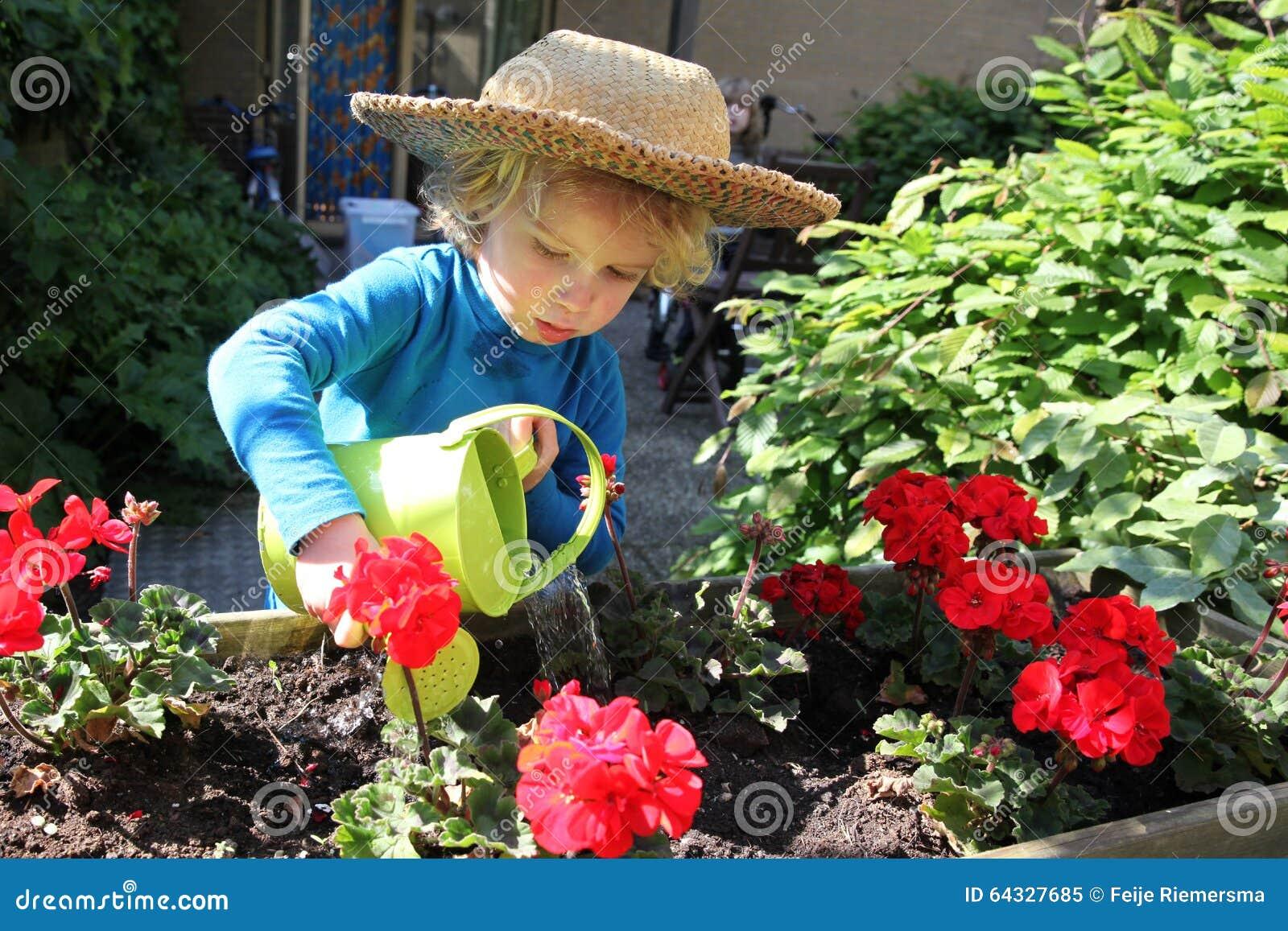 Young child watering flowers garden boy spring 64327685 jpg