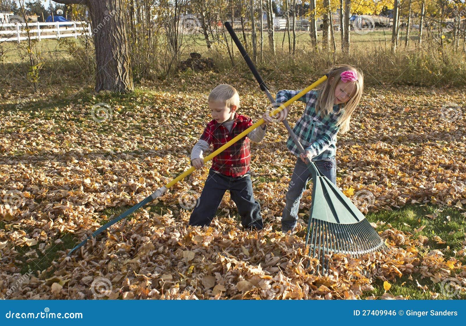 young children raking autumn leaves royalty free stock image