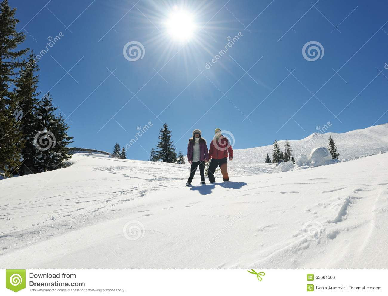 Young couple on winter vacation royalty free stock image for Vacation in the snow