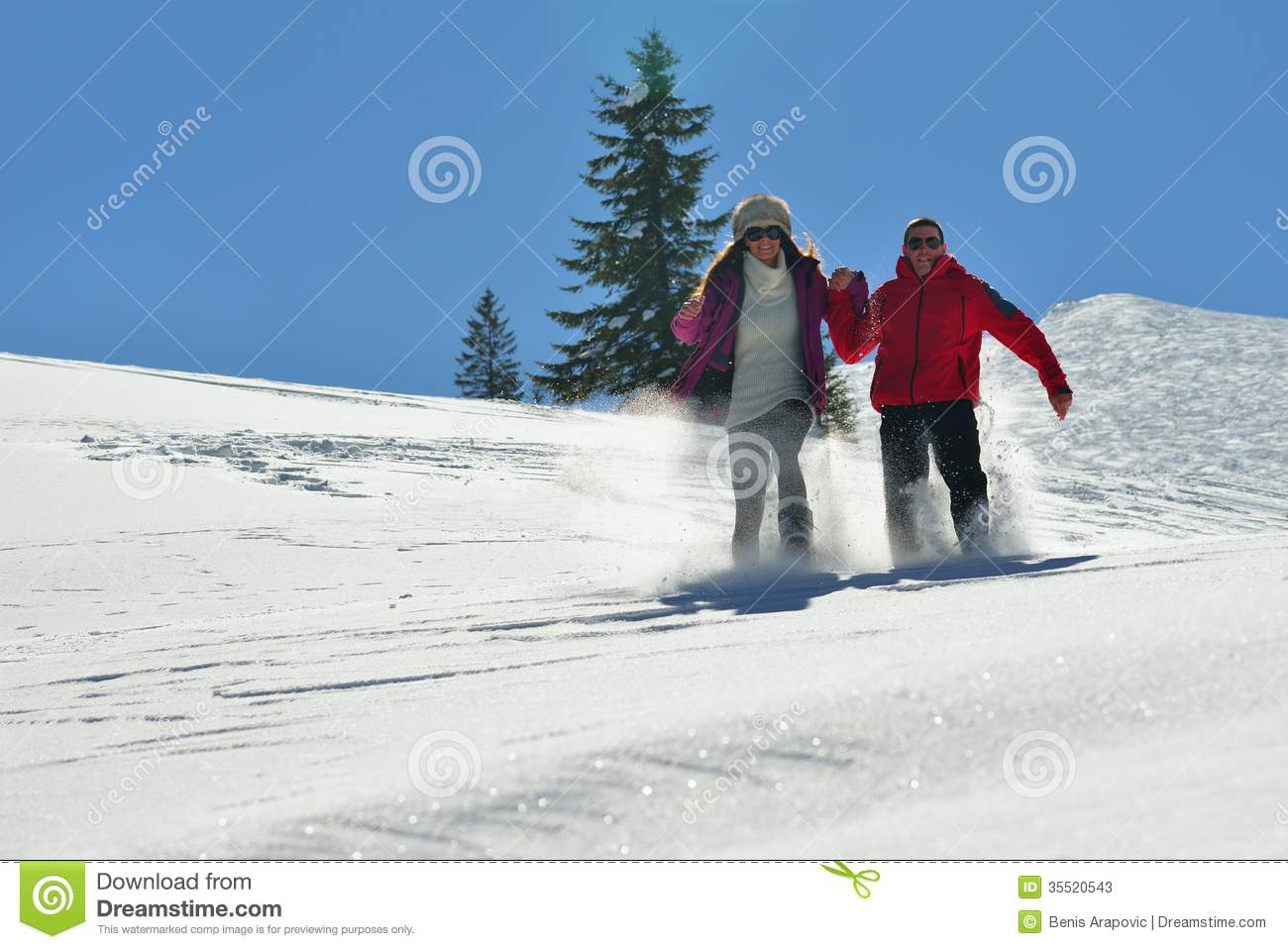 Young couple on winter vacation stock photos image 35520543 for Vacation in the snow