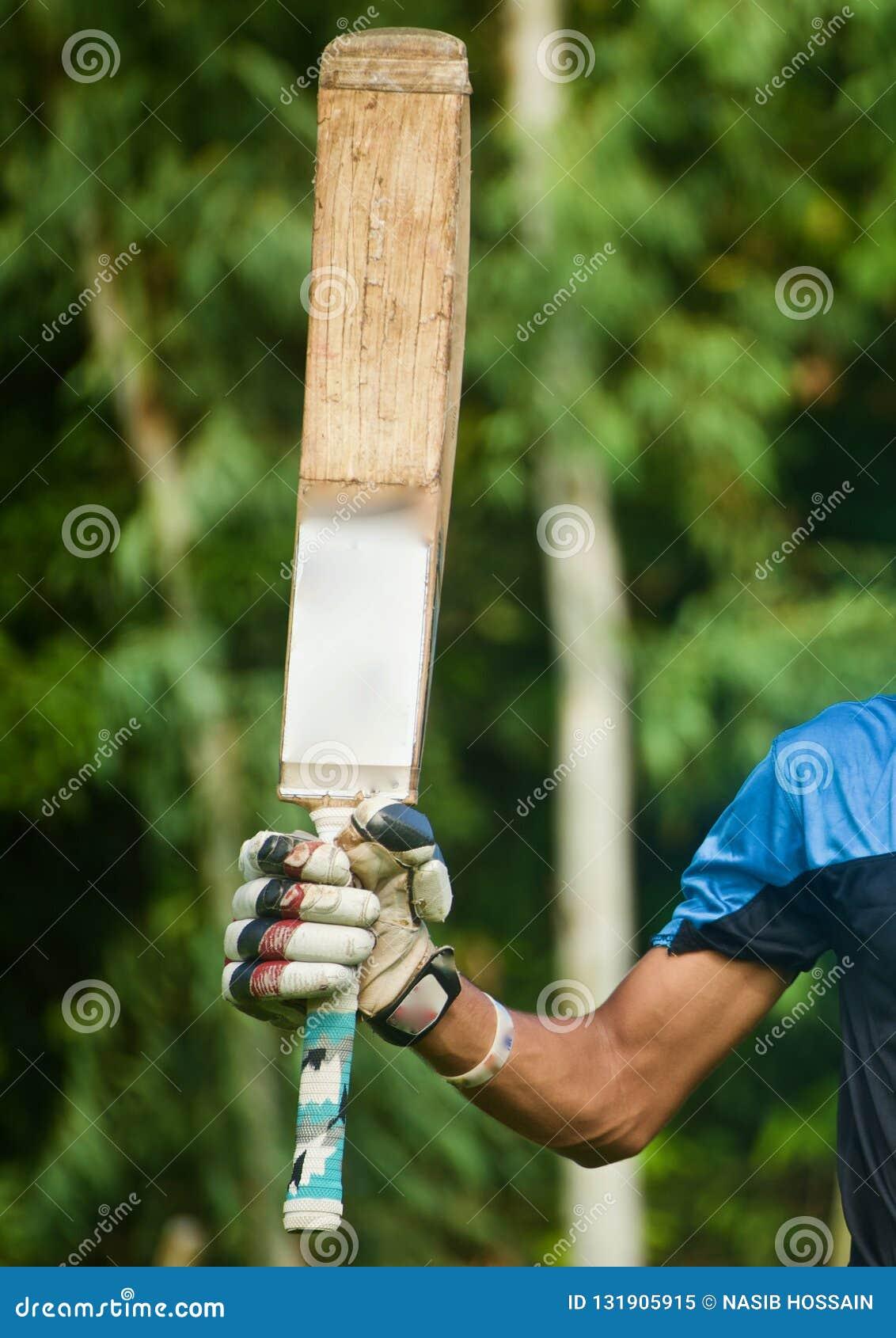 Batsman raising his bat after scoring a century