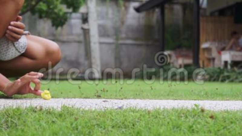 Young Cute Woman Actively Plays With Yellow Kitten On Grass Yard On