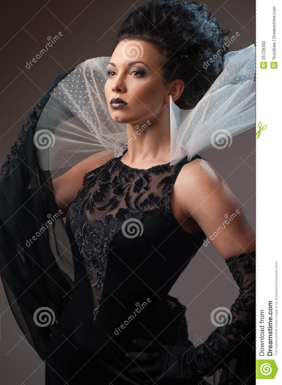 Young Elegant Queen In Black Dress Stock Photo Image 35728390