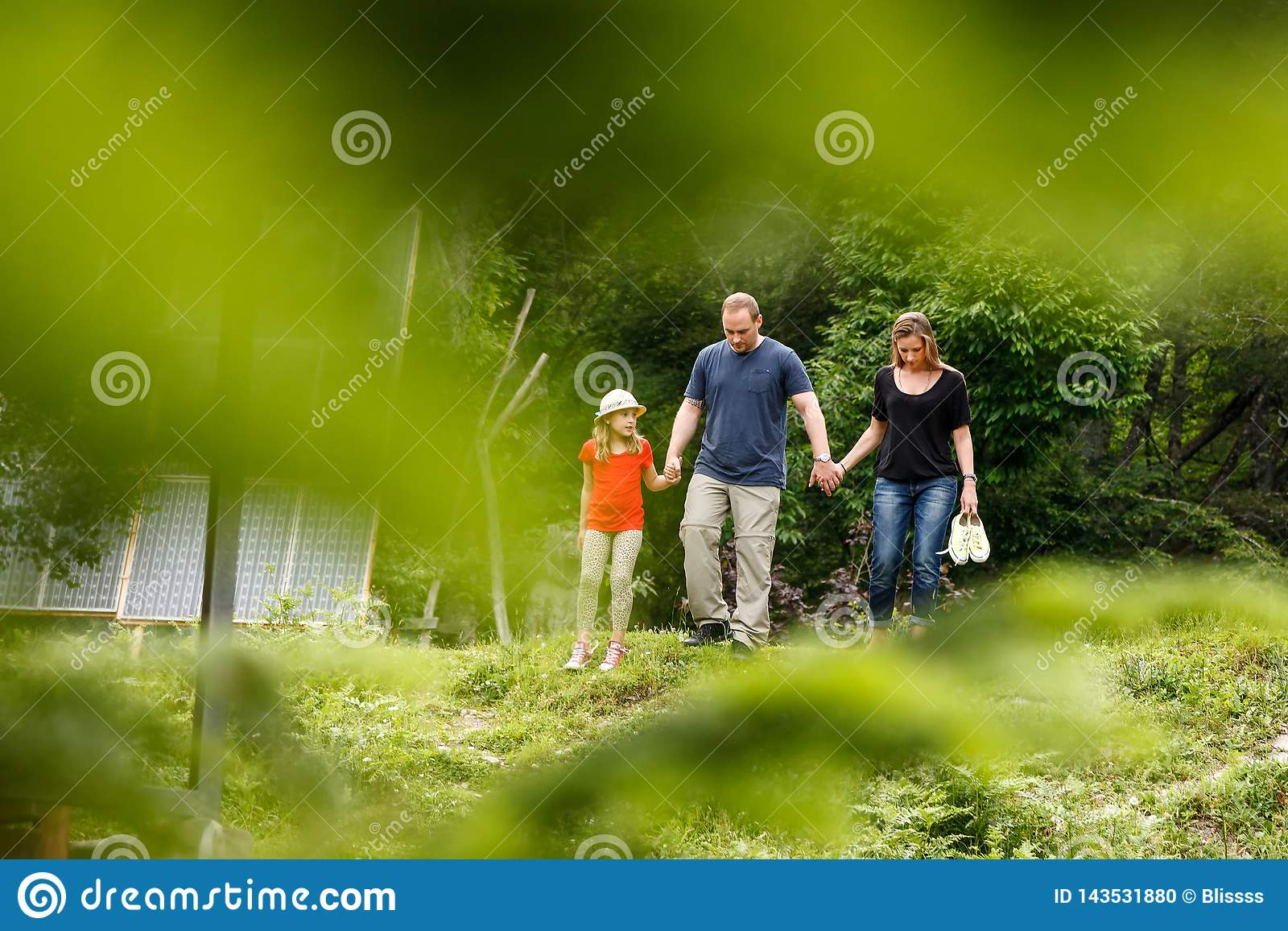 Young family of father, mother and daughter walks together in sunny summer mountain forest holding each others` hands