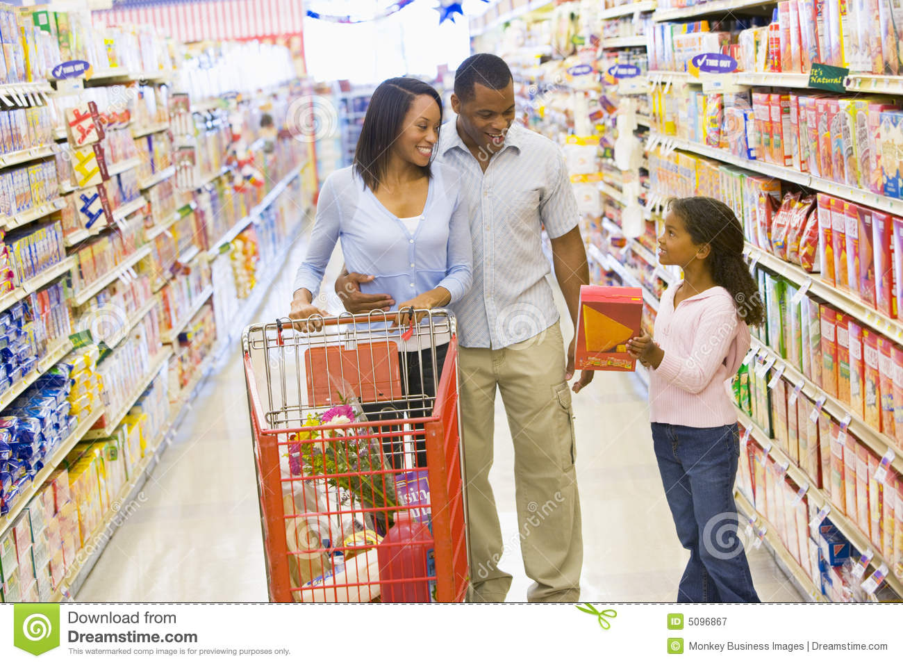 ... Grocery Shopping Royalty Free Stock Photography - Image: 5096867