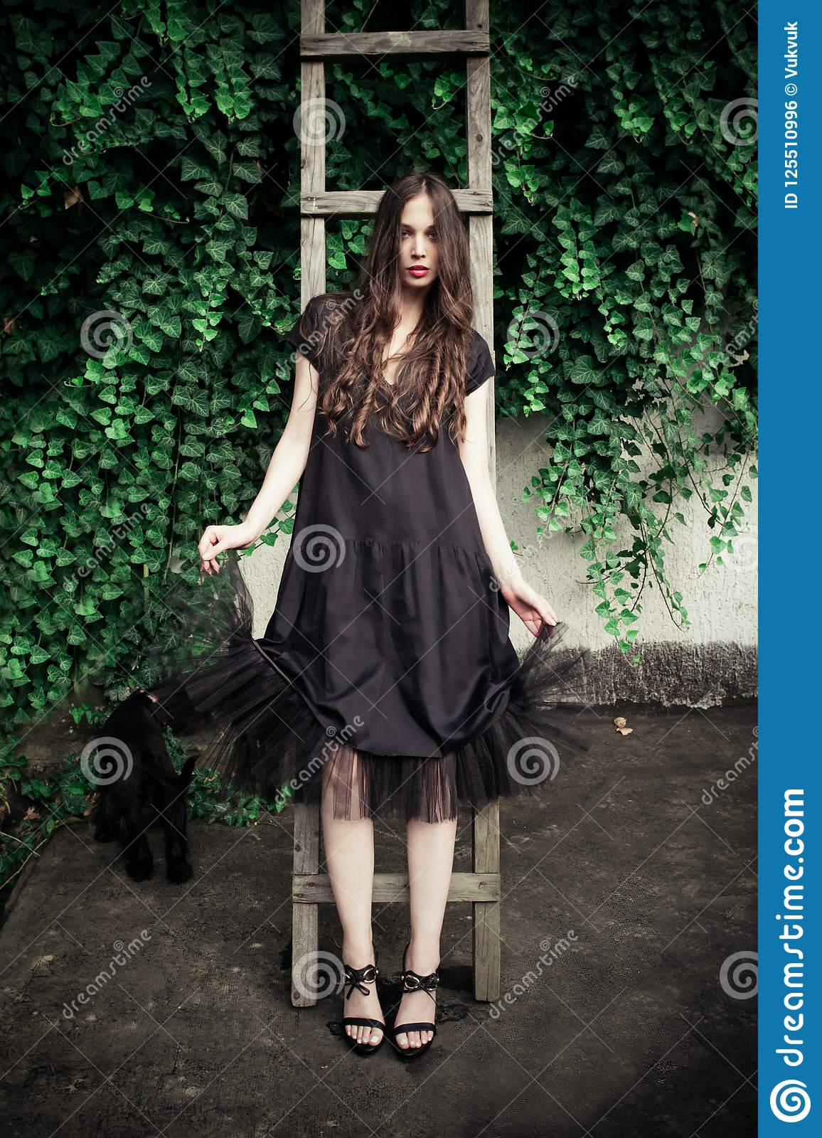Young fashion woman in black elegant dress lean on wooden ladder