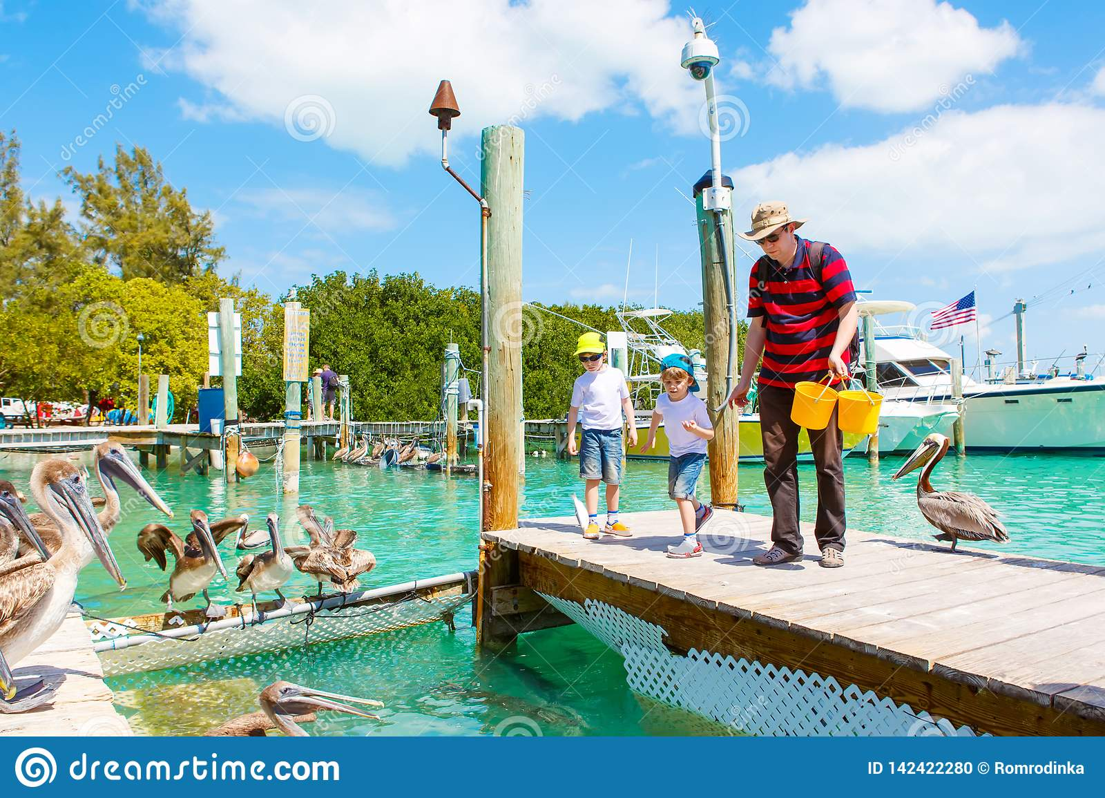 Young father and two little kid boys feeding fishes and big brown pelicans in port of Islamorada, Florida Keys. Man and