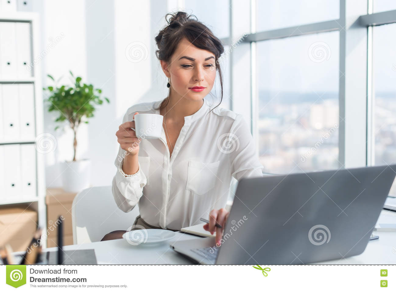 Young female business person working in office using laptop, reading and searching information attentively, drinking