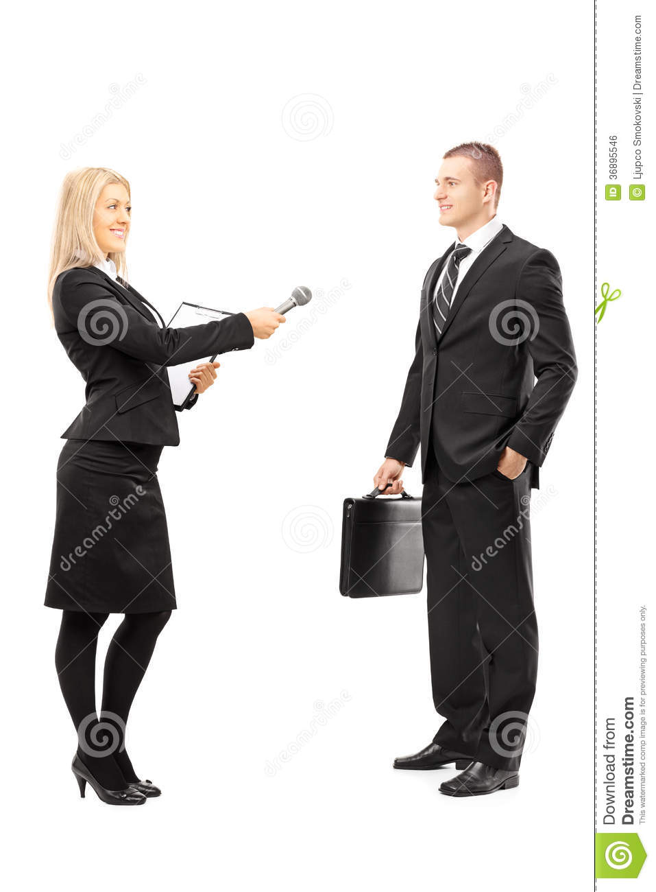 Young female interviewer talking to male businessman