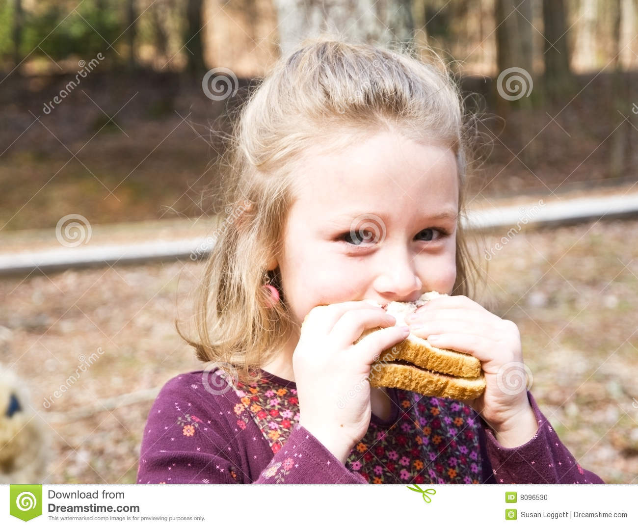 Young Girl on a Picnic