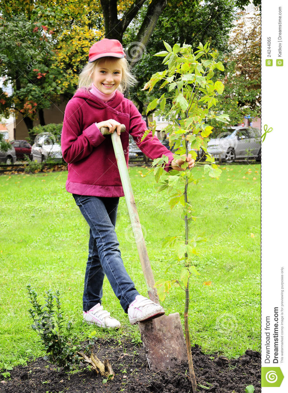 Young girl planting tree in the garden