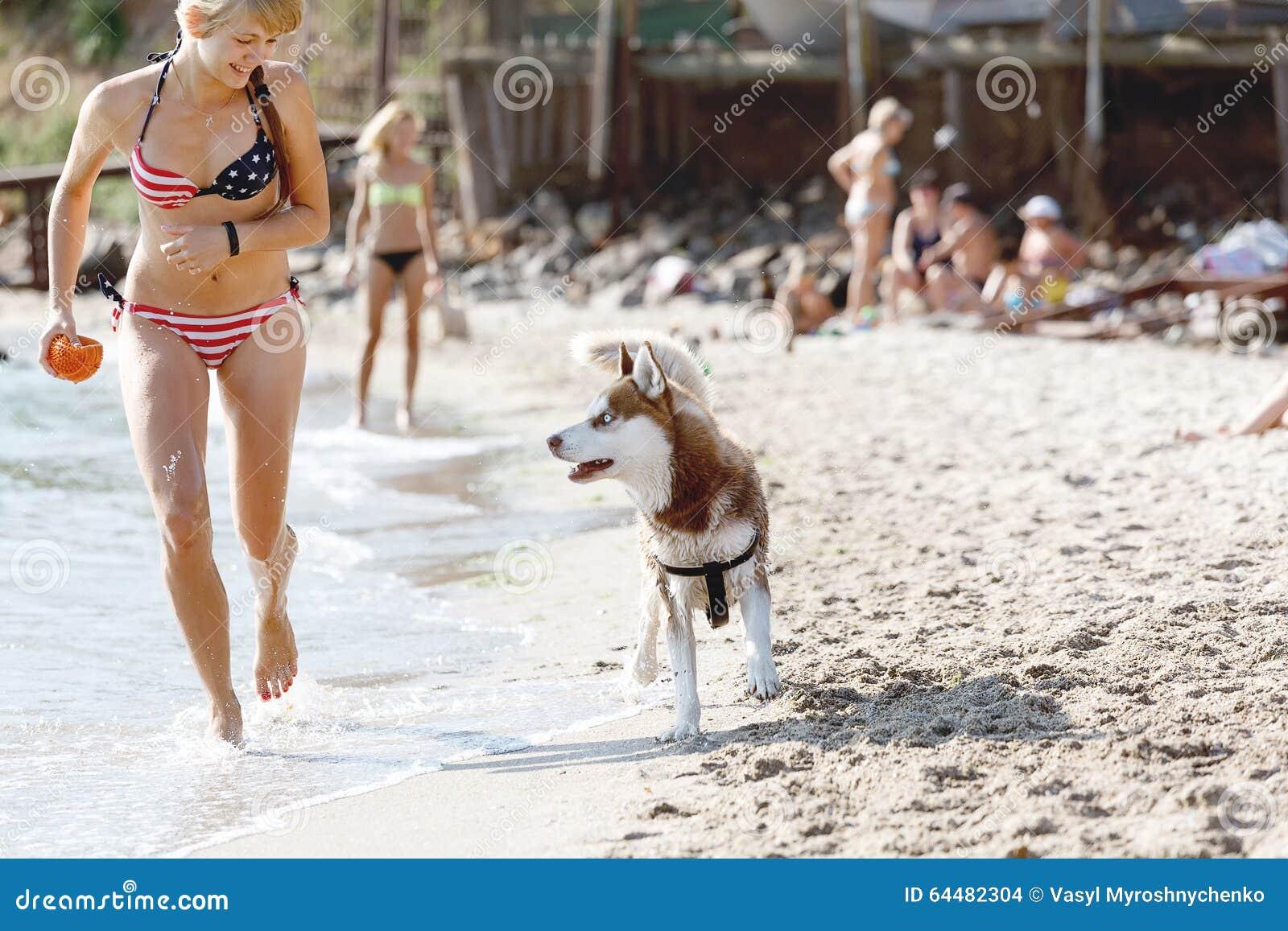 Black Dog Resort