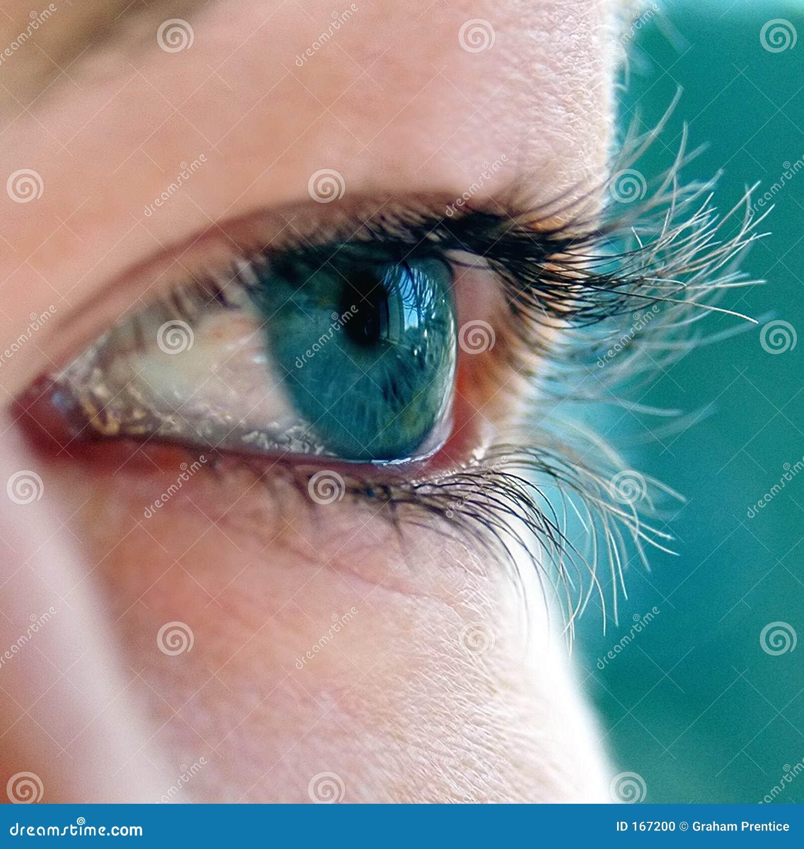 Young Girl s Green Eye