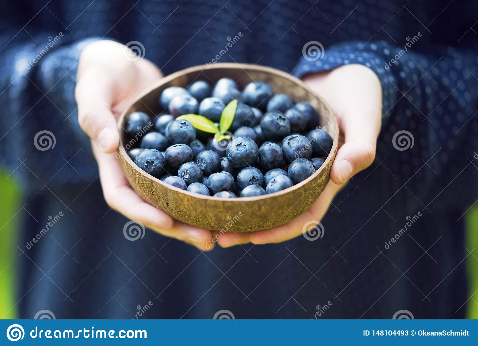 Young girl's hands holding a bowl with fresh ripe blueberries.