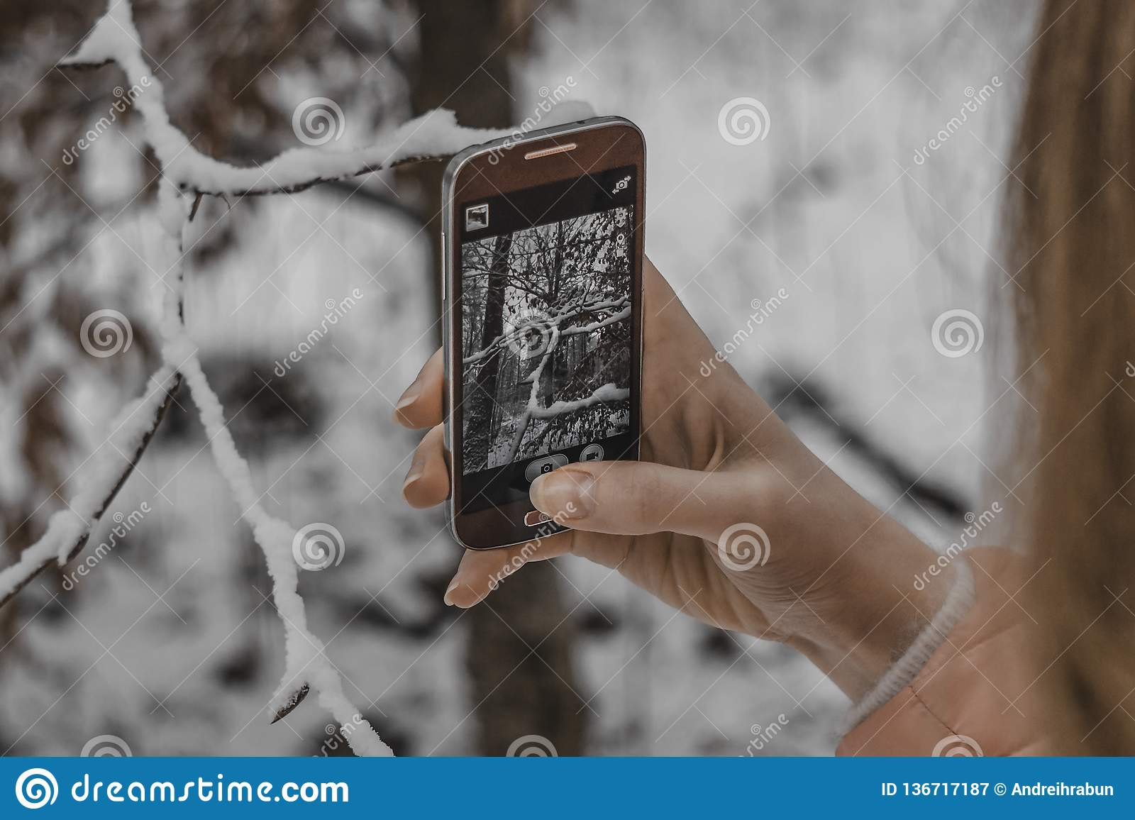 Young girl taking winter nature pictures with mobile phone
