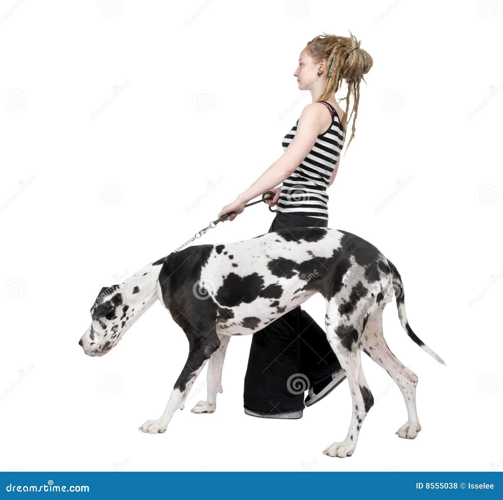 Young girl walking his dog (Great dane 4 years) ha
