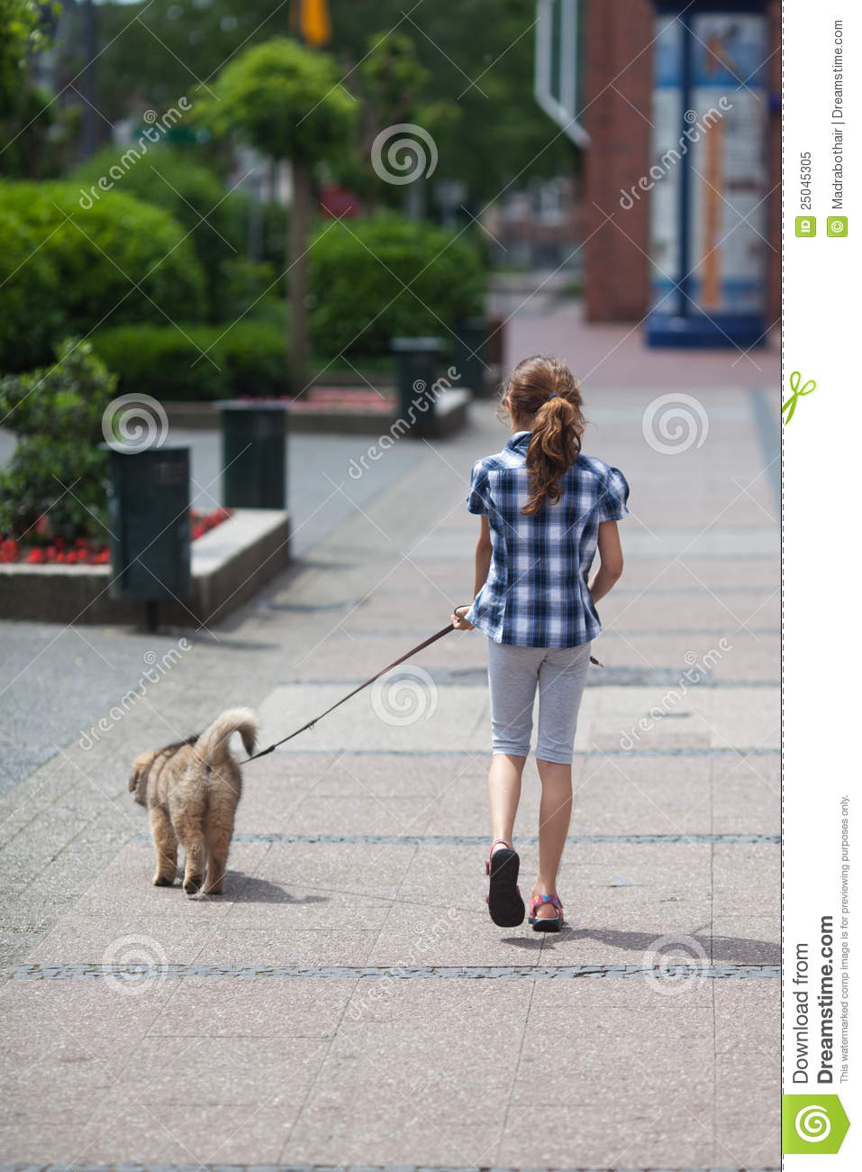 Young Girl Walks A Puppy In The City Royalty Free Stock ... | 957 x 1300 jpeg 143kB