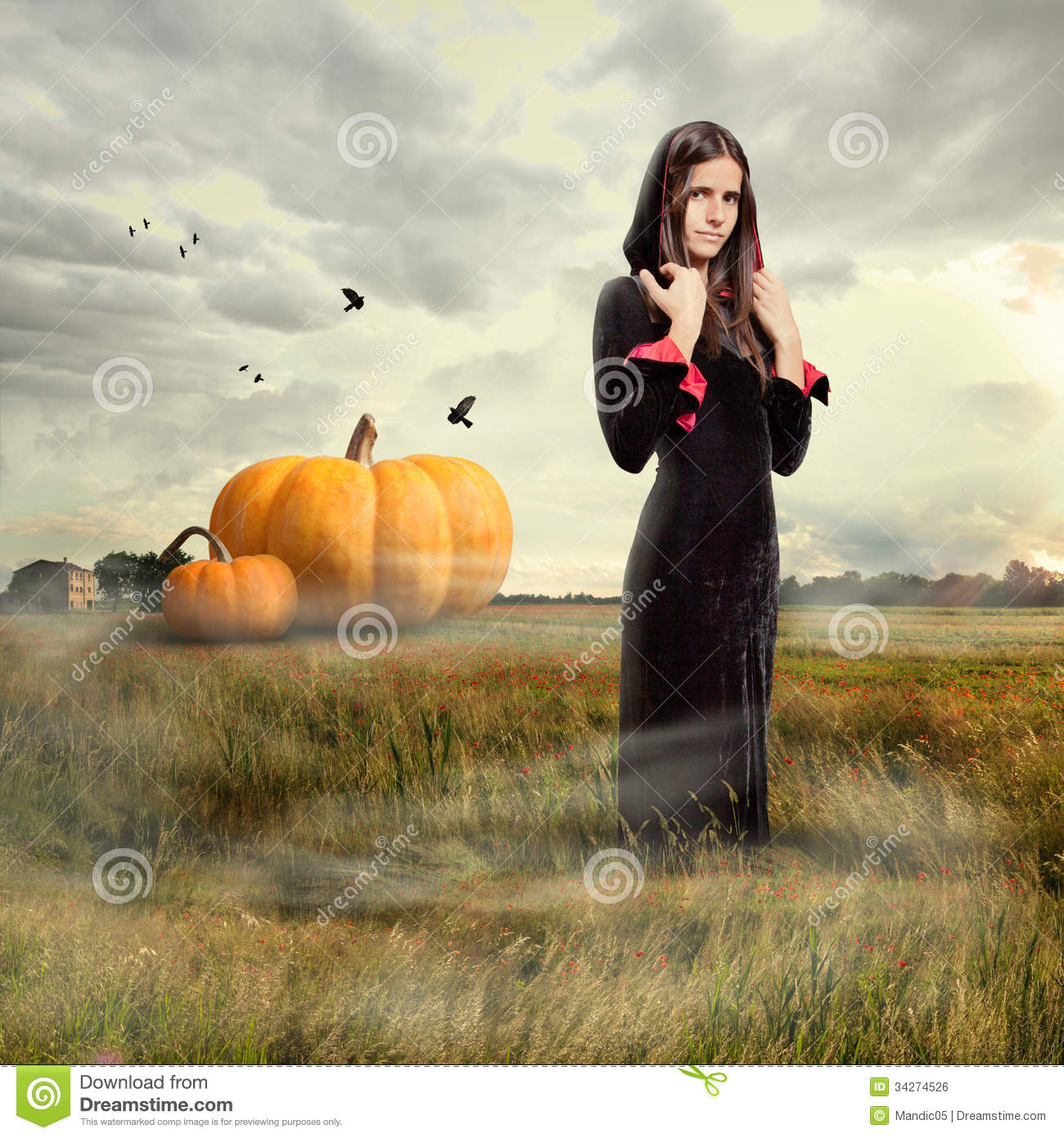 Young girl wearing witch costume