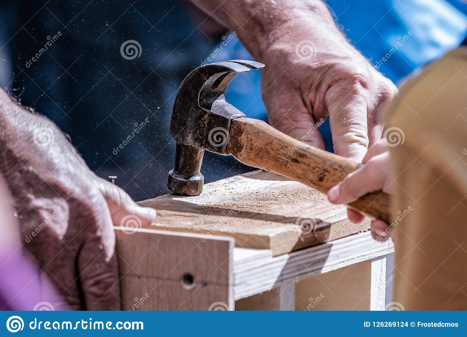 Young helper with a hammer