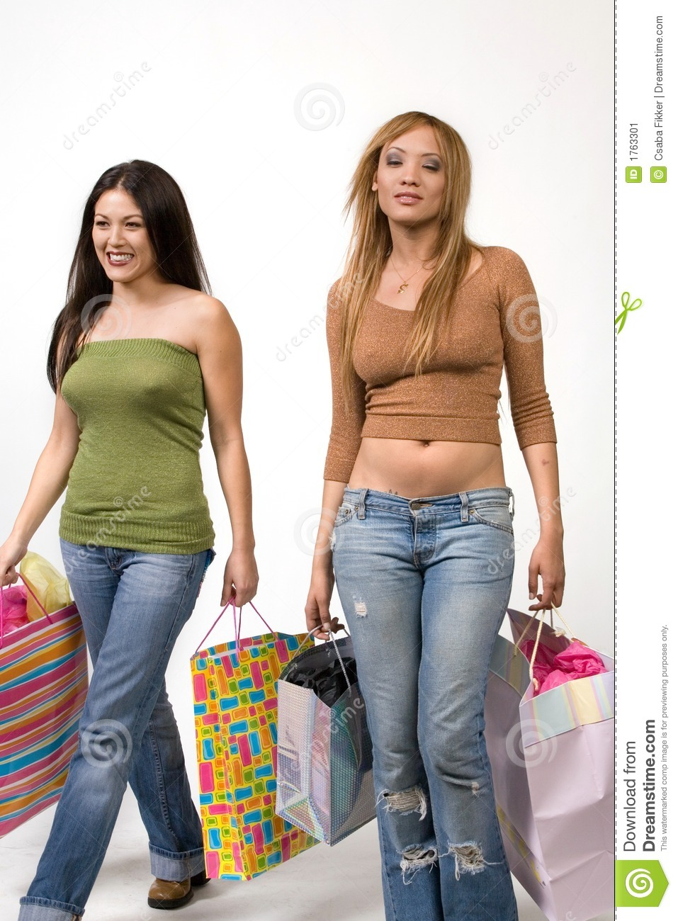 young  hip female shoppers stock image image 1763301 money bags clip art black and white money bags clip art free images