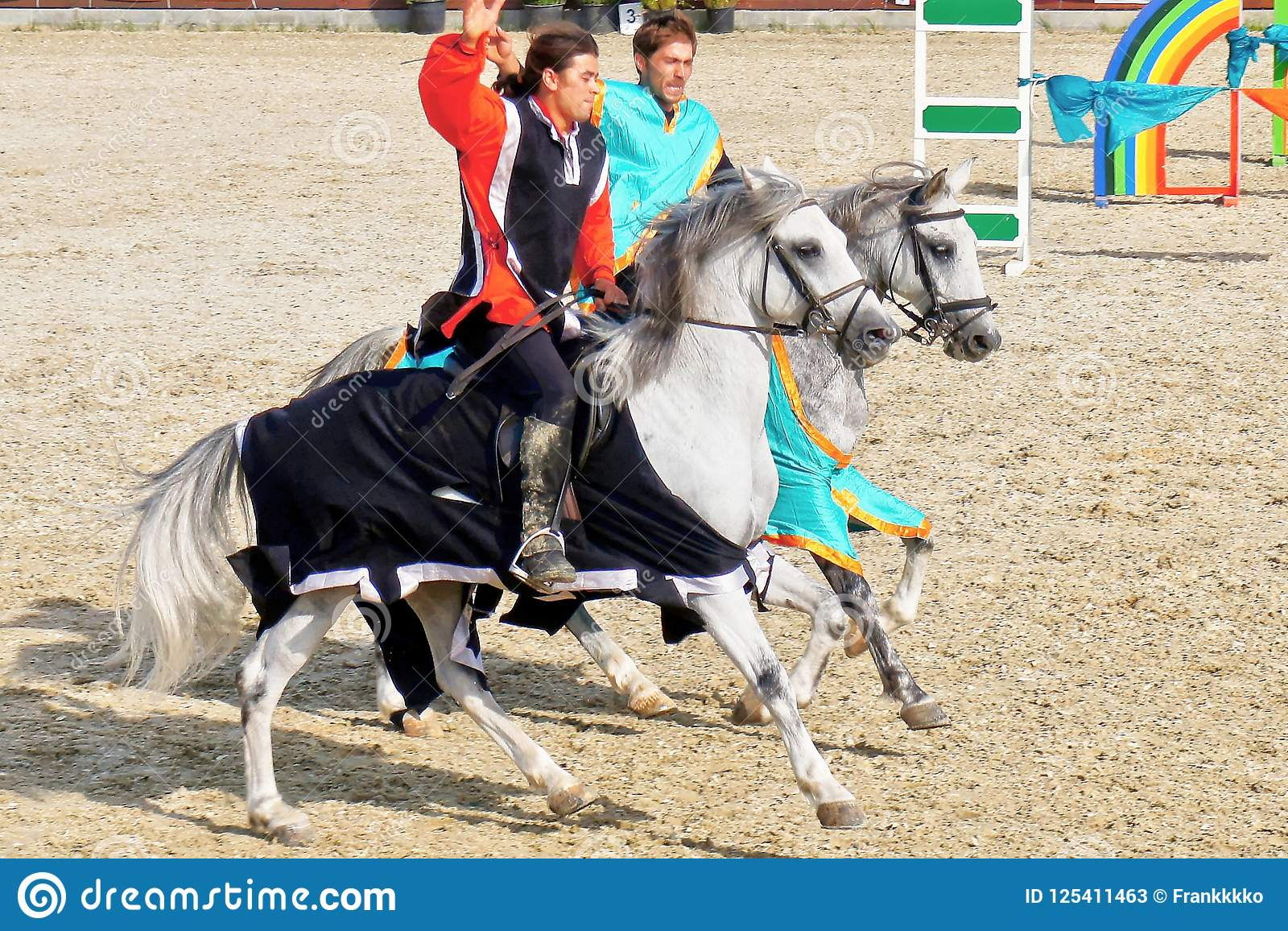Young Knights Competing On Purebred Horses Editorial Stock Photo Image Of Domestic Equestrian 125411463